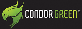 CondorGreen Infotech IT Consulting & Support Services