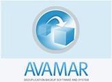 logo_avamar